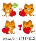 ベクター トラ猫 ネコのイラスト 14364812