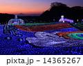 東京ドイツ村 ウィンターイルミネーション ドイツ村イルミネーションの写真 14365267