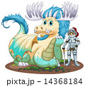 Dragon and knight 14368184