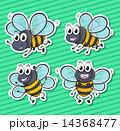 バグ 昆虫 虫のイラスト 14368477