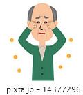 ベクター 花粉 花粉症のイラスト 14377296