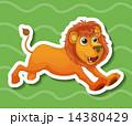 ライオン 絵 イラストのイラスト 14380429