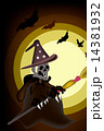 Halloween Ghost Witch on Night Background 14381932
