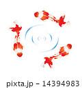 ベクター 泳ぐ 金魚のイラスト 14394983