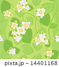 seamless pattern of white lotus on the background of green swamp 14401168