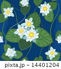 seamless pattern of white lotus  14401204