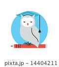 Wisdom owl flat line icon concept 14404211