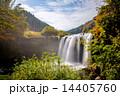 宝泉寺温泉 仙洞の滝 滝の写真 14405760