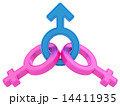 Male and female gender symbols chained together 14411935