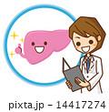 医師 肝臓 ベクターのイラスト 14417274