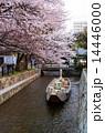 京都・高瀬川の桜と高瀬舟 14446000