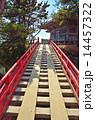 すかし橋 五大堂 松島の写真 14457322
