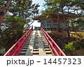 すかし橋 五大堂 松島の写真 14457323