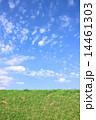 芝生 牧草地 土手の写真 14461303