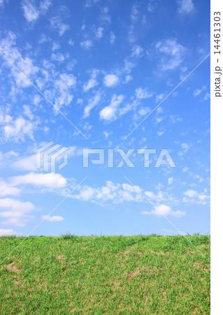 草原 14461303