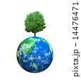 地球に育った大樹 14476471