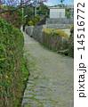 沖縄の首里金城町石畳道 14516772