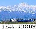 ローカル線 立山連峰 北陸線の写真 14522350