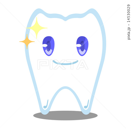 健康な歯ちゃん 14530029