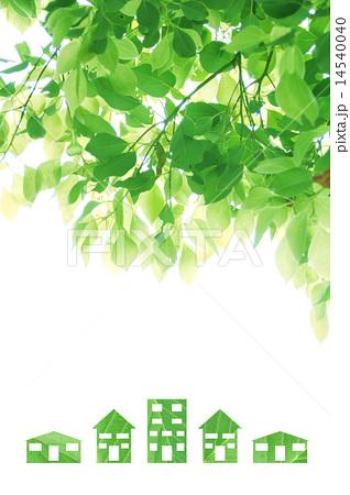 エコイメージ 楠木と緑のおうち 縦 14540040