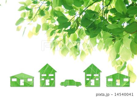 エコイメージ 楠木と緑のおうちと車 横 14540041