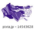 小野小町-紫 14543628
