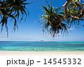沖縄の海 沖縄のビーチ 沖縄の写真 14545332