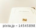 結婚式の招待状 14545898