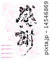 筆文字 感謝(桜 ハガキ).n 14546869