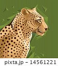 Portrait of a leopard vector illustration 14561221