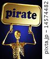 海賊 骸骨 金色のイラスト 14574482