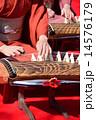 琴の演奏 14576179