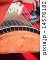 琴の演奏 14576182
