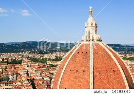 ドーム フィレンツェ フローレンス 14593349