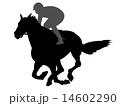 競馬 14602290