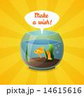Golden fish 14615616