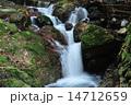 清流 河川 川の写真 14712659
