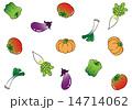 野菜 14714062