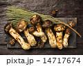 Mushroom 14717674