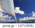 夏のヨット 14719081