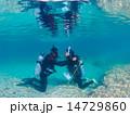 ダイビング講習 スキューバダイビング 潜水の写真 14729860
