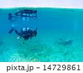 スキューバダイビング 潜水 ダイバーの写真 14729861
