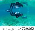 スキューバダイビング 潜水 ダイバーの写真 14729862