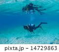 スキューバダイビング 潜水 ダイバーの写真 14729863