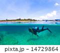 スキューバダイビング 潜水 ダイバーの写真 14729864