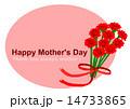 母の日 花束 カーネーション イラスト  14733865