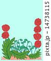 赤い花、背景ブルー 14738115