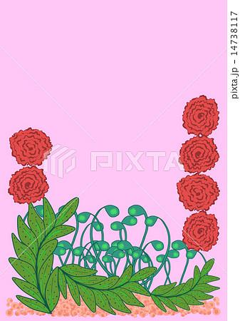 赤い花、背景ピンク 14738117