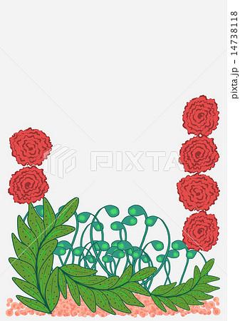 赤い花、背景白 14738118