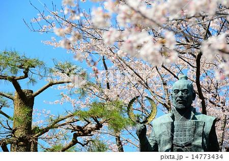 浜松城公園 徳川家康像の春 14773434